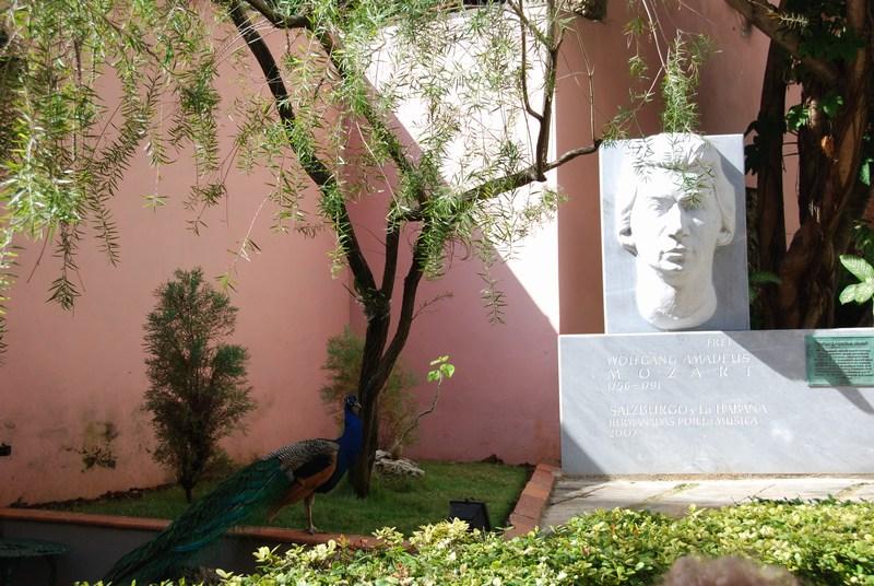 mini-Cuba February 2009 074